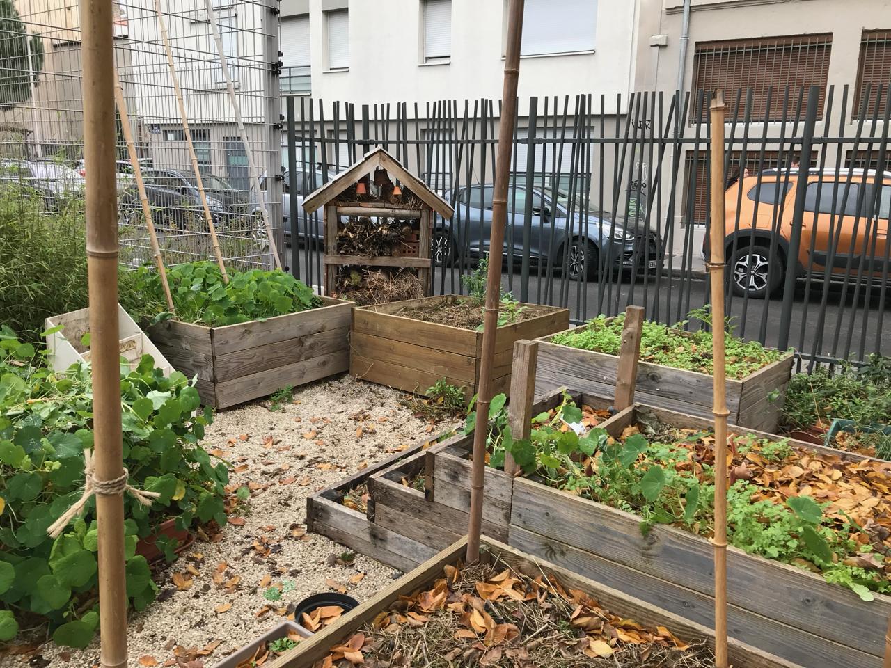 Le jardin partagé Le Vol'Terre (automne 2018)