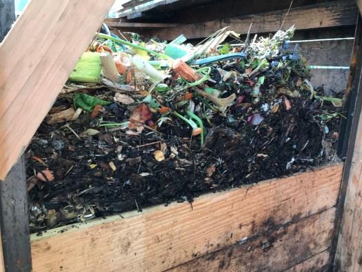 Couche après couche, des semaines de compost