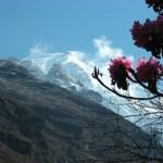 trek, Himal at last