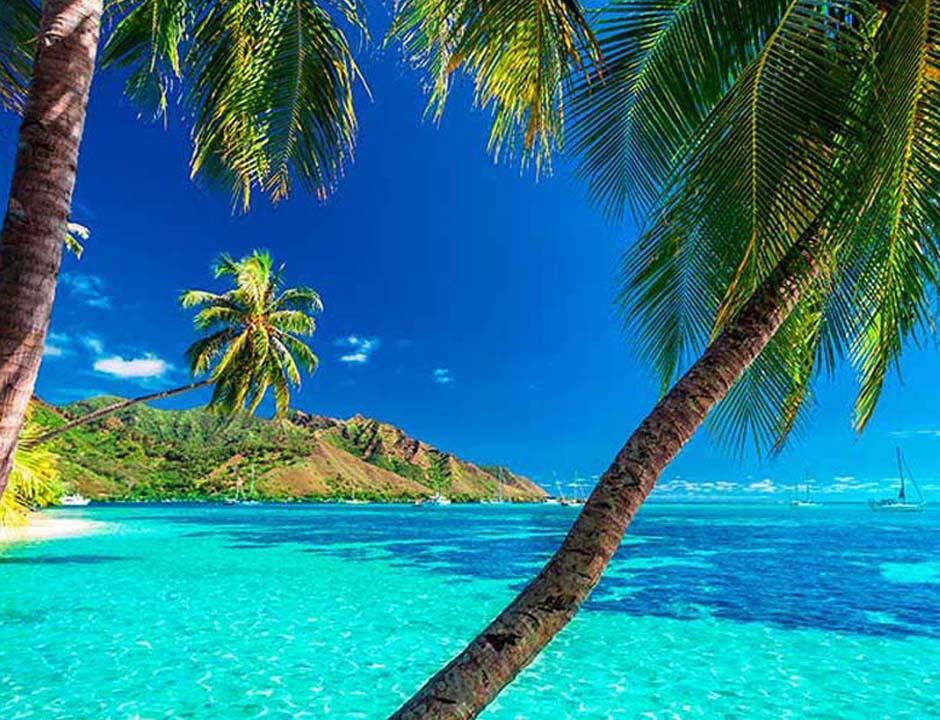 polinesia o maldive