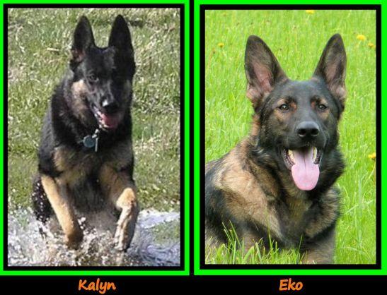 Kalyn and Eko Together Framed
