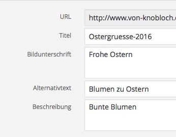 Wordpress alt-Tag Alternativtext prüfen