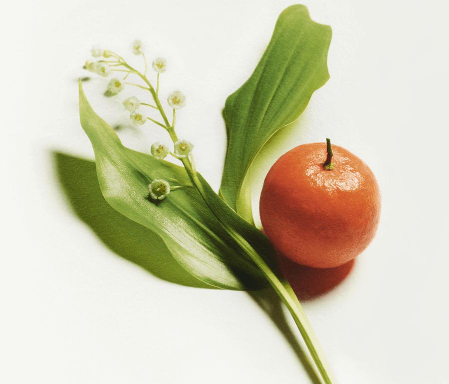 VONsociety: Les Eaux de Chanel, Maiglöckchen und Mandarine © Chanel