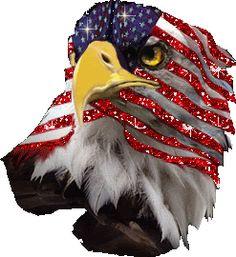 eagle glitter