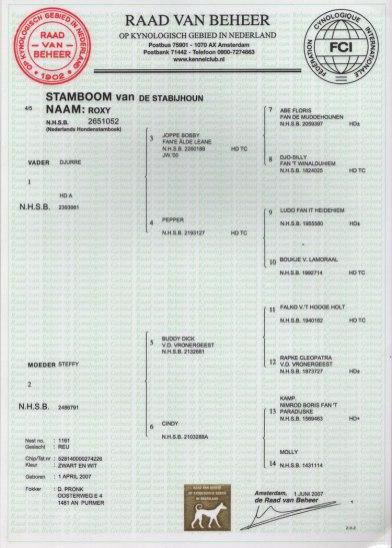 StamboomSteinssonklein