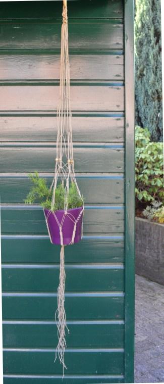 plantenhanger4