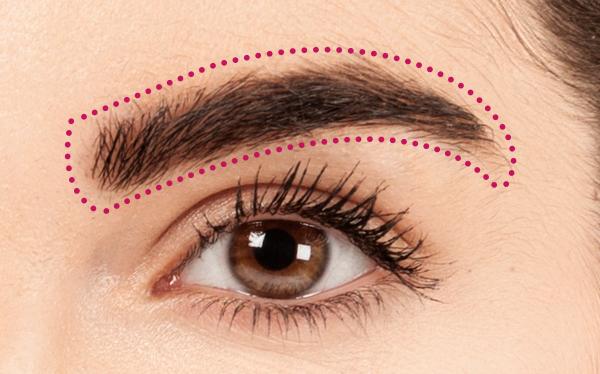 Brochas de maquillaje para cejas