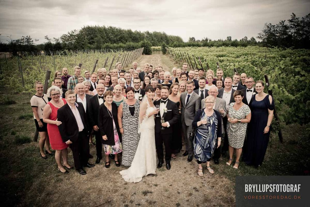 gruppefoto bryllup