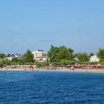 Πευκί Εύβοιας παραλία.