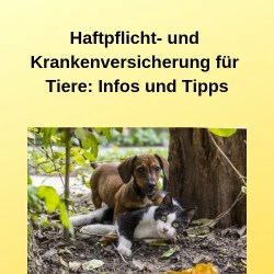 Haftpflicht- und Krankenversicherung für Tiere Infos und Tipps