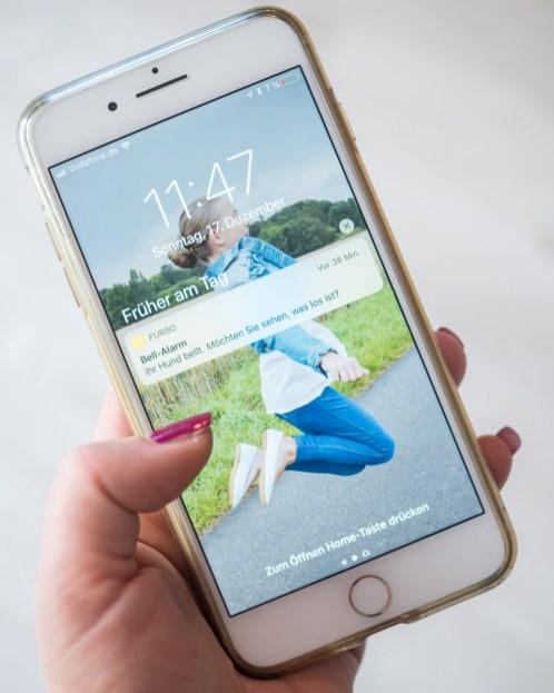 furbo hundekamera benachrichtigung app