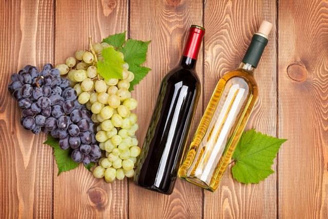 vinho55 (1)
