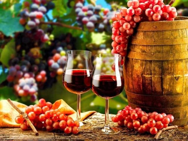 vinho88 (1)