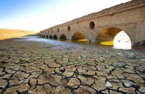 efeitos da seca
