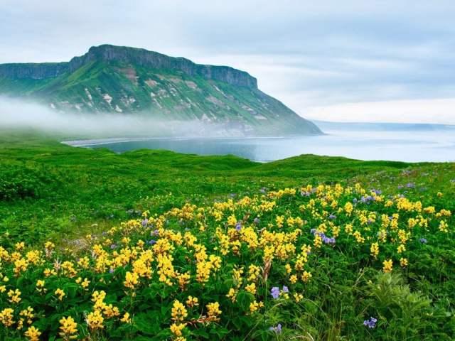 Ilhas Kuril: Rússia e Japão