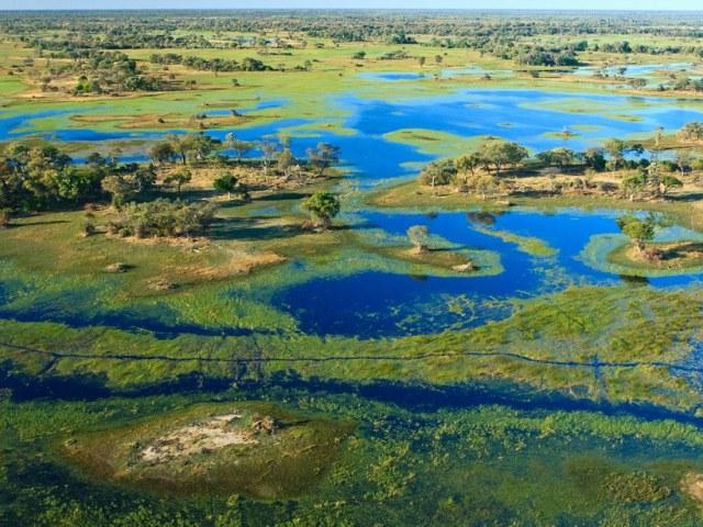 Delta do Okavango:Botswana