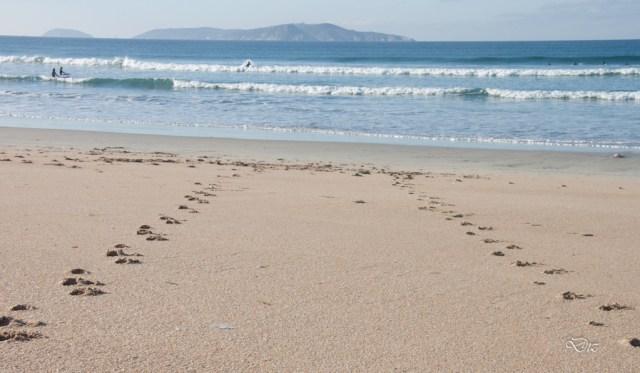 Praia de A Lapa