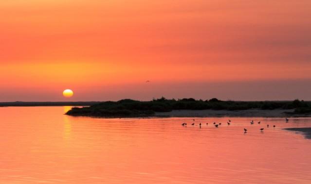 Playa da Ilha da Armona