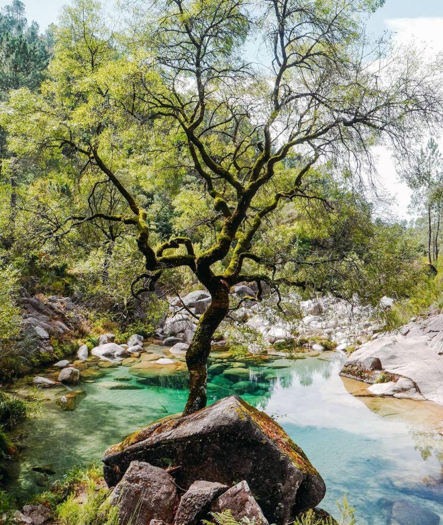 Poço Verde de Fafião
