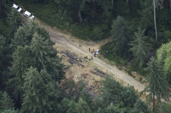 Workers gather in a staging area Saturday, Aug. 11, 2018, near Steilacoom, Wash., near the site on Ketron Island in Washington state where an Horizon Air turboprop plane crashed Friday after it was stolen from Sea-Tac International Airport. Investigators were working to find out how an airline employee stole the plane and crashed it after being chased by military jets that were quickly scrambled to intercept the aircraft. AP