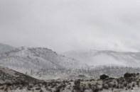 snowy nonsense...