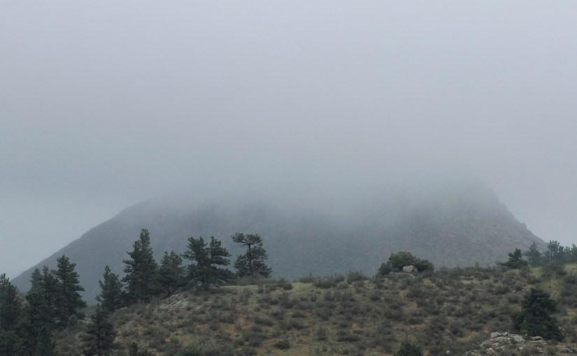 <em>In the Mist</em>