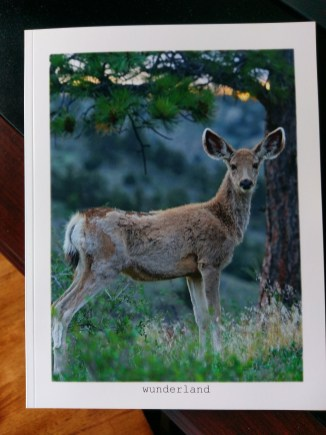 Mule Deer Big Ears: Mule Deer of the Colorado Rocky Mountains front cover...