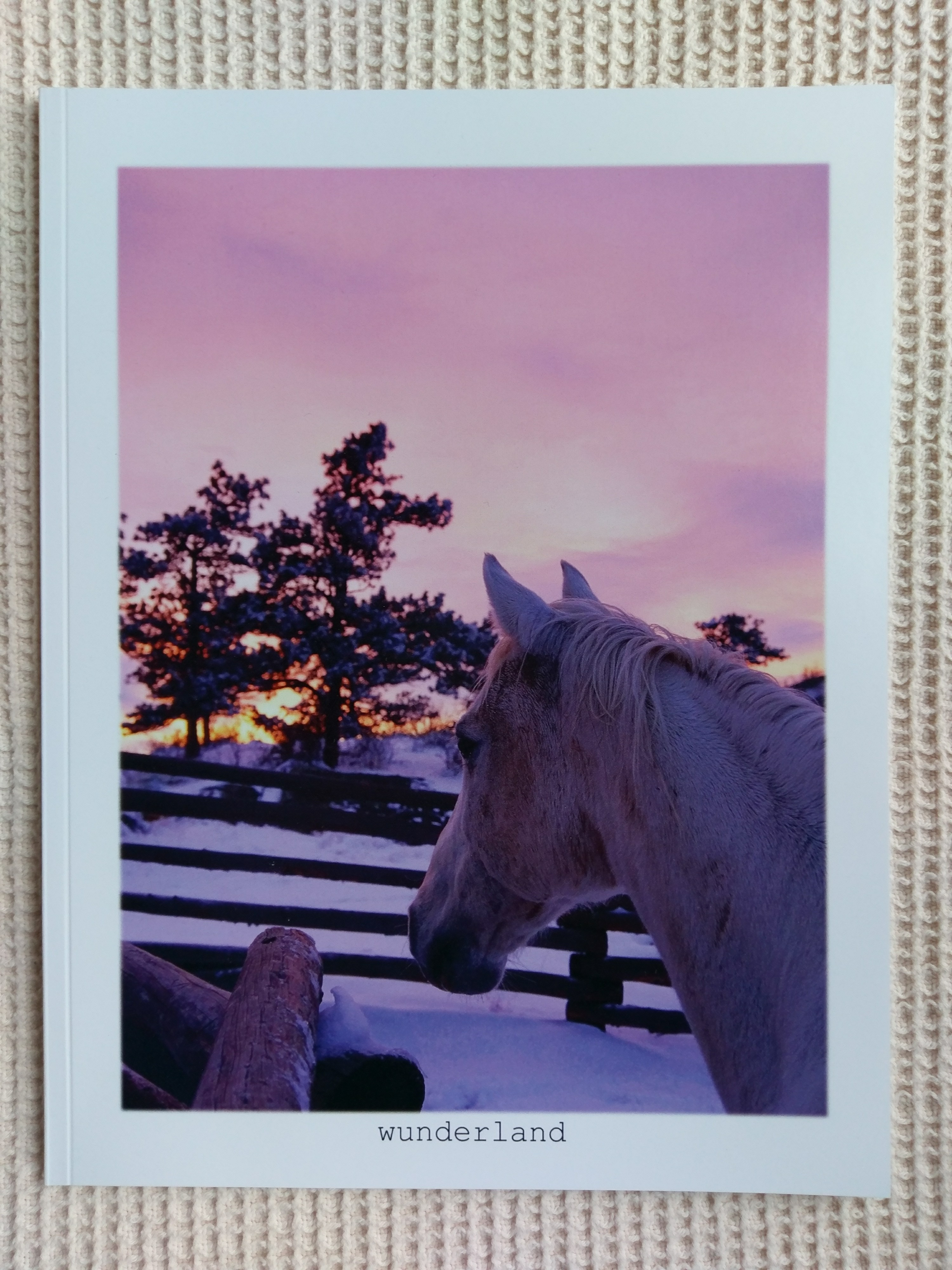 Horses in Snowland Front Cover