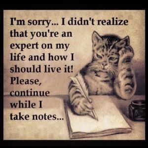 You're an expert