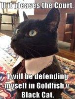attorney-cat