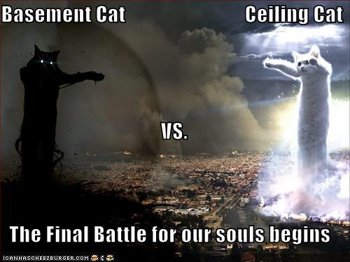 basement-cat-vs-ceiling-cat