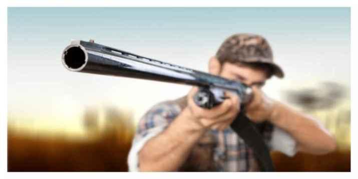 Fondations et associations s'unissent pour «dénoncer les excès» de la pratique de la chasse