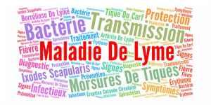 80% de mauvais diagnostics concernant la maladie de Lyme