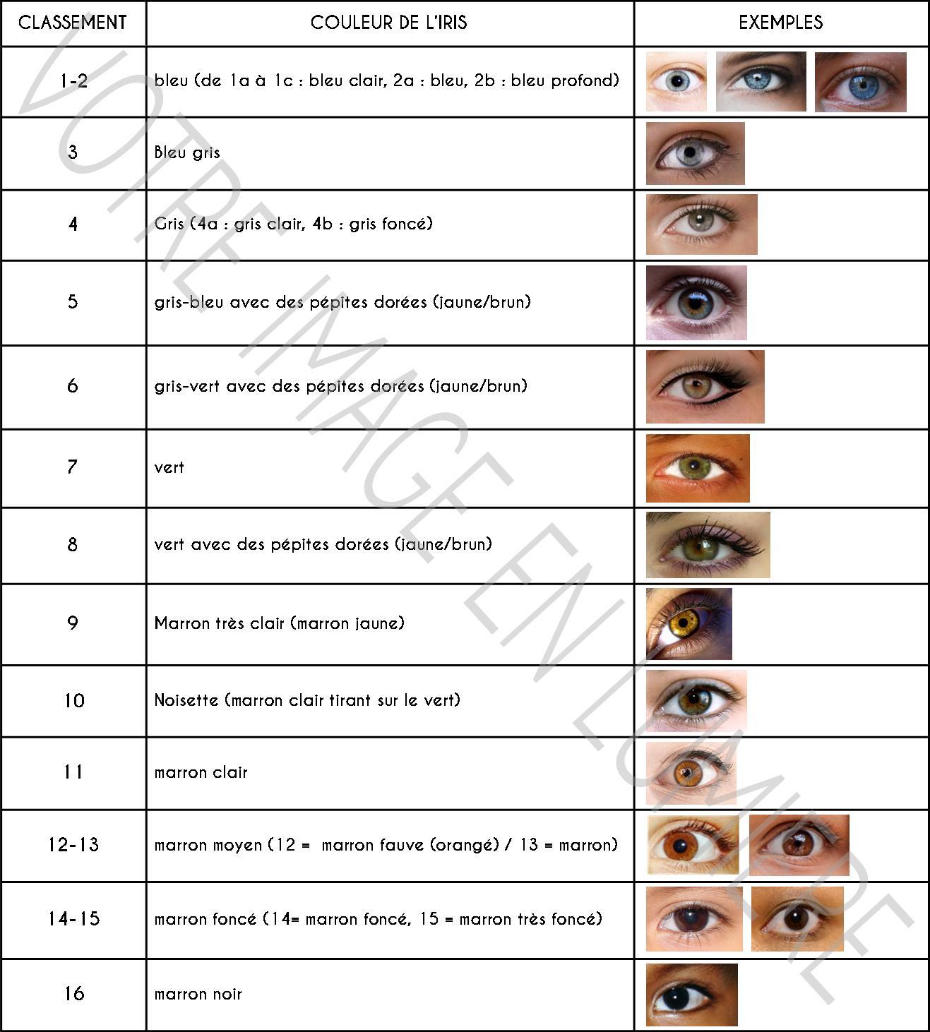 e235a73d0c01a0 Classement couleur des yeux selon Martin-Schultz - Votre image en lumière