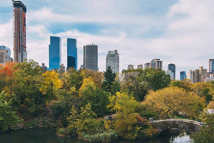 Central Park est le poumon de la ville de NEw-York. C'est le quartier idéal pour trouver un logement.