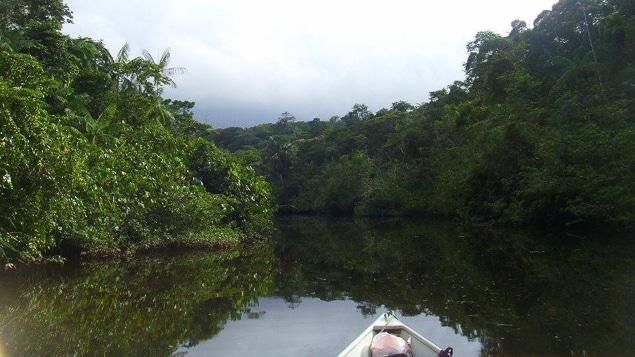 Guyane-6