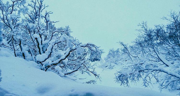 L'hiver à Myvatn les températures descendent très bas