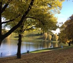 Outono-na-Alemanha (2)