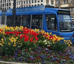 Primavera-na-Alemanha (3)