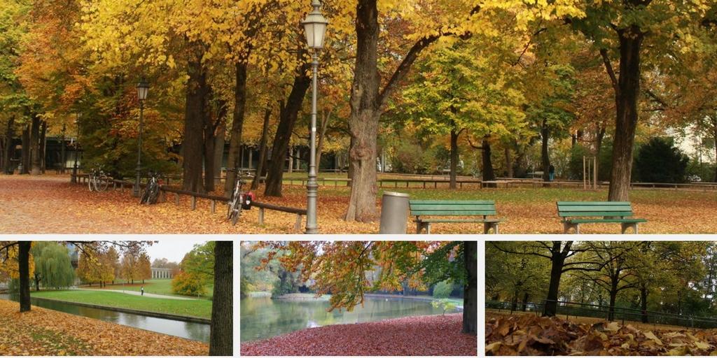 Vários pontos da cidade de Munique durante o outono.