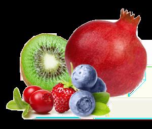 LamiDerm-Apex-fruits-antioxydants-LifePharm-LPGN-Jean-Marc-Fraiche-VousEtesUnique.com