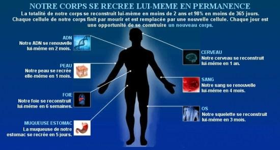 Principe-fondamentale-de-la-nutrition-Jean-Marc-Fraiche-VousEtesUnique.com