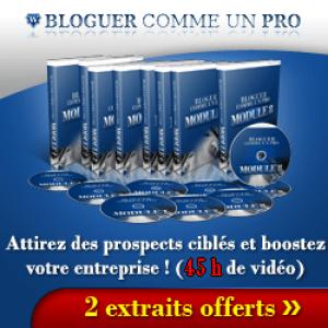 blogger-comme-un-pro