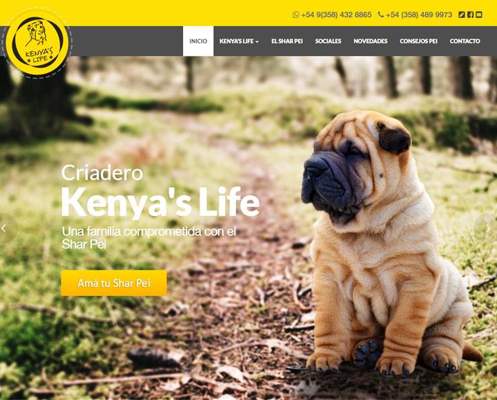 Kenya's Life