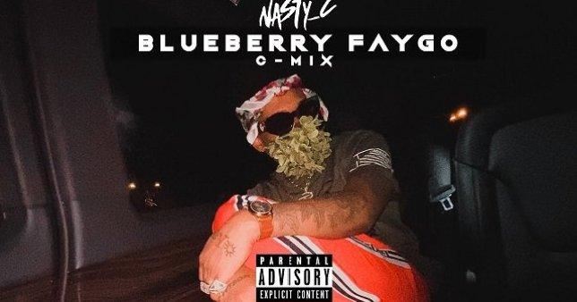 Nasty C Blueberry Faygo C Mix
