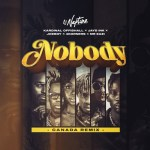 Nobody Canada Remix artwork