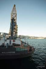 Bateau - Port de Wellington