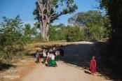 Birmans en route pour l'école versus moinillon