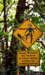 Roadsign Méduses - Cape Tribulation