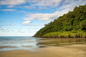 plage - Cape Tribulation